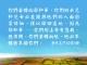 每研、美言 2019/12/13 (五)</br>♥轉向祂的眷顧