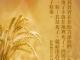 每研、美言 2020/5/13 (三)</br>♬愛,我願意♬